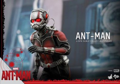 Hot Toys Ant-Man figure -moving ahead