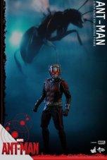 Hot Toys Ant-Man figure - with flying ant