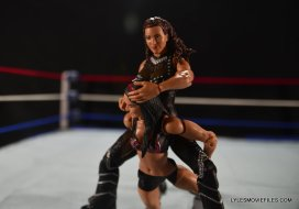 Mattel WWE Elite 37 Stephanie McMahon -chinlock on Brie Bella