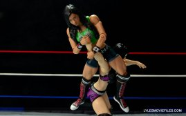 WWE Mattel Basic AJ Lee - black widow to Paige2