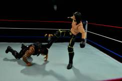 Seth Rollins Mattel exclusive -curb stomping Reigns