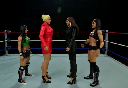 WWE Basic Stephanie McMahon - scale with AJ Lee, Lana and Brie Bella