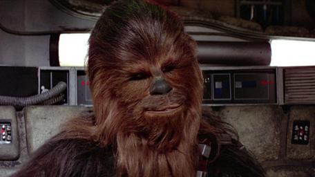 chewbacca likeness