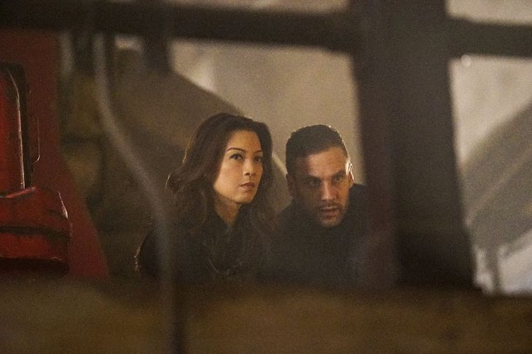 agents of shield parting shots review -may and hunter