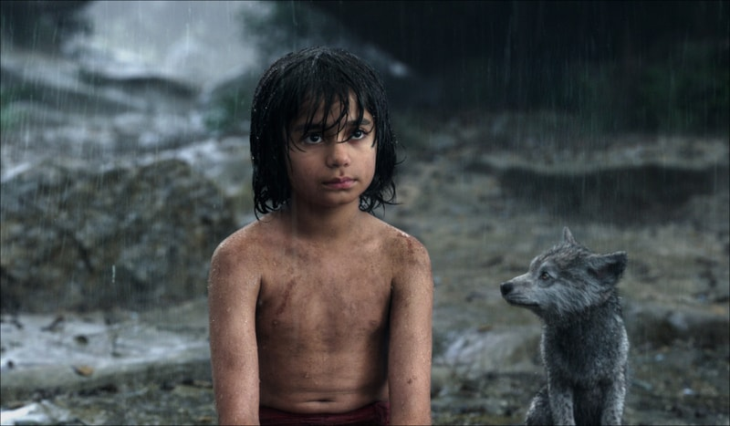 the jungle book review - Mowgli and Grey-min