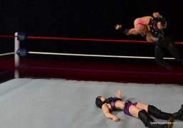 WWE Natalya figure review - splash to Paige