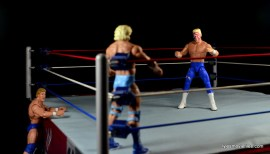 Sting Defining Moments figure review - going aftrer Flair