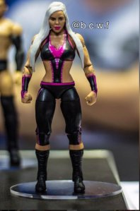 Super ToyCon - Mattel WWE Dana Brooke