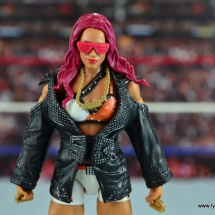 wwe-elite-44-sasa-banks-figure-review-wide-shot-with-accesories