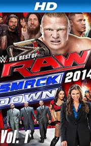 WWE Best of Raw and Smackdown 2014