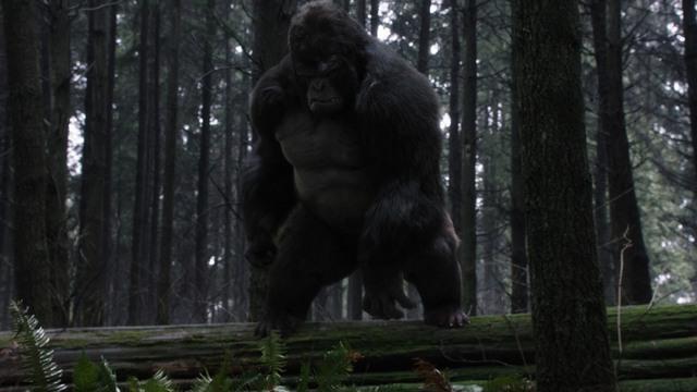 The Flash Attack on Gorilla City review - Gorilla Grodd