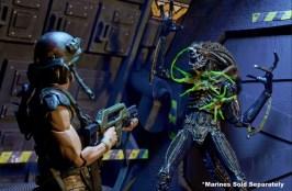 Aliens 12 reveals - Alien damage
