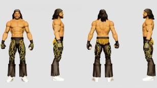 wwe sdcc18 reveals -macho man basic