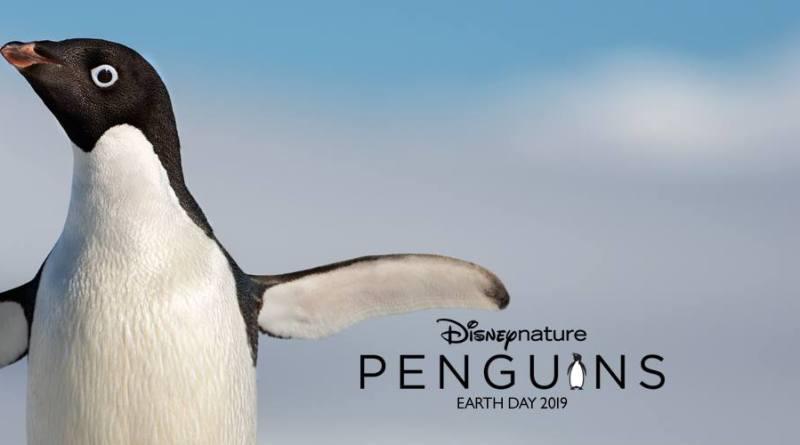 penguins giveaway