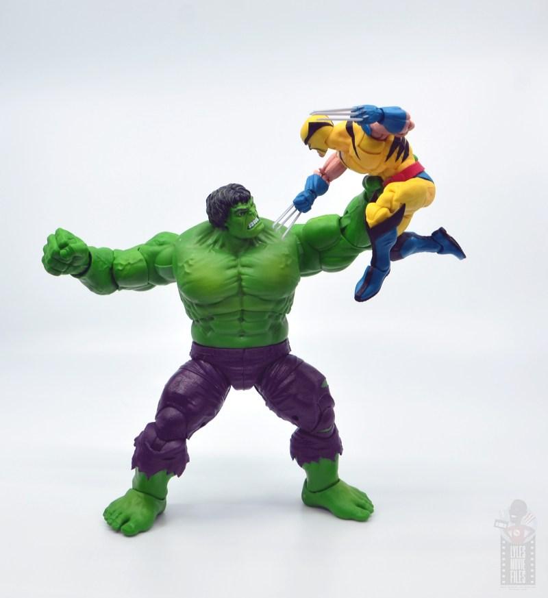 marvel legends hulk vs wolveringe figure review 80th anniversary - hulk vs wolverine