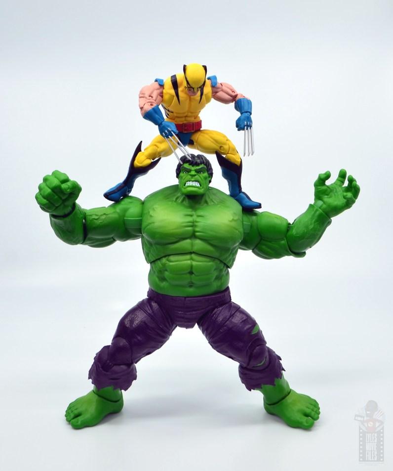 marvel legends hulk vs wolveringe figure review 80th anniversary - wolverine on top of hulk