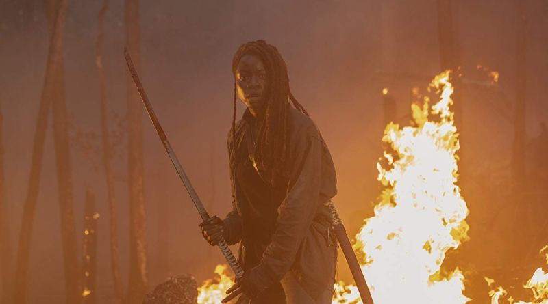 the walking dead lines we cross review - michonne