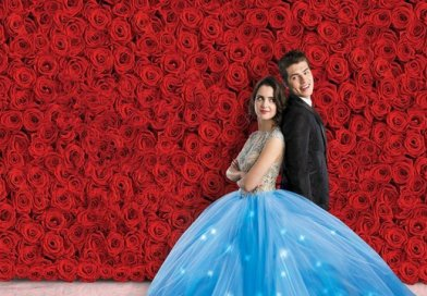 a cinderella story - christmas wish review - laura marano and gregg sulkin poster