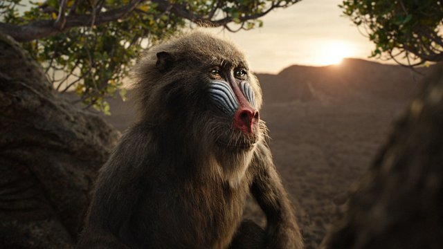 the lion king 2019 review -rafiki