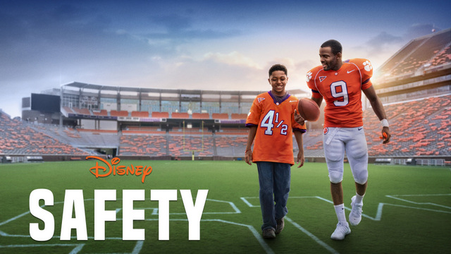 safety review - main poster