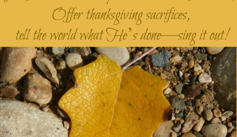 Offer Thanksgiving Sacrifices