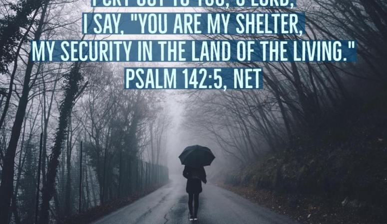 How to Find Shelter When Life Rains on Your Parade