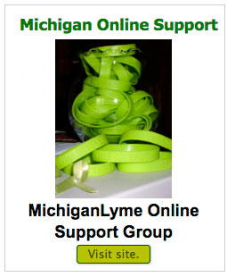 mich-online-support