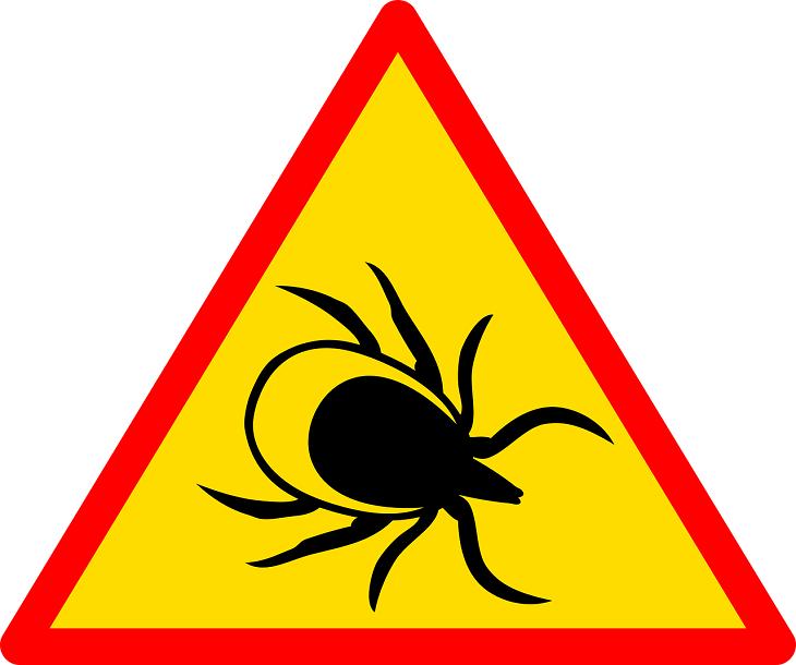Infectolab - tick sign