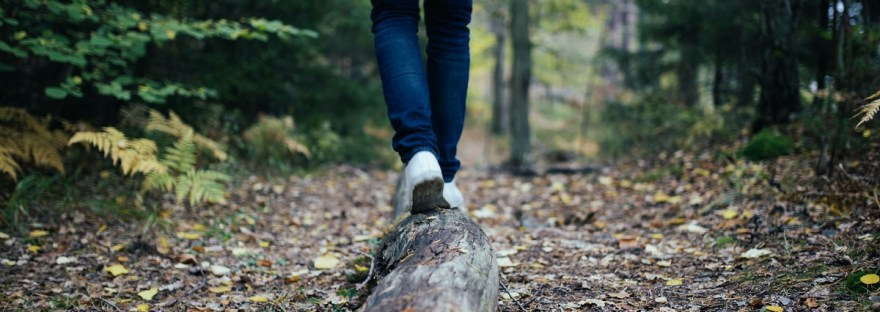 person walking in woods on log