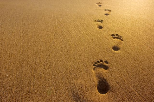 Gods Footsteps In The Sand Clip Art Cliparts