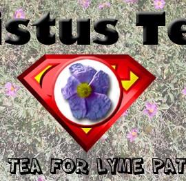 Cistus Tea: Super Tea for Lyme Patients