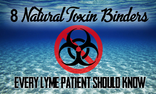 8 Natural Toxin Binders Every Lyme Patient Should Know