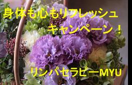 image204