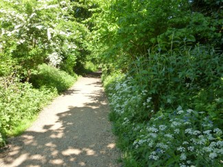 London railway path