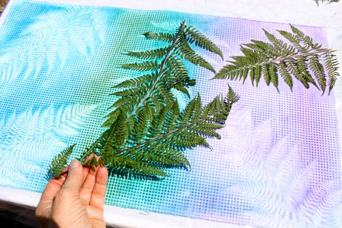 Removing ferns from sun printing