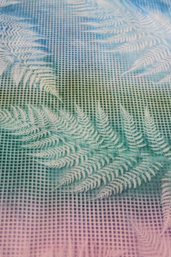 Closeup of fern and needlepoint canvas sun print