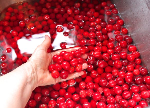 Cherries in sink