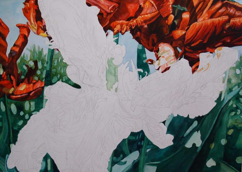 Tulip step 7 - Lynda Hoffman-Snodgrass
