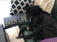 little-man-enjoying-life
