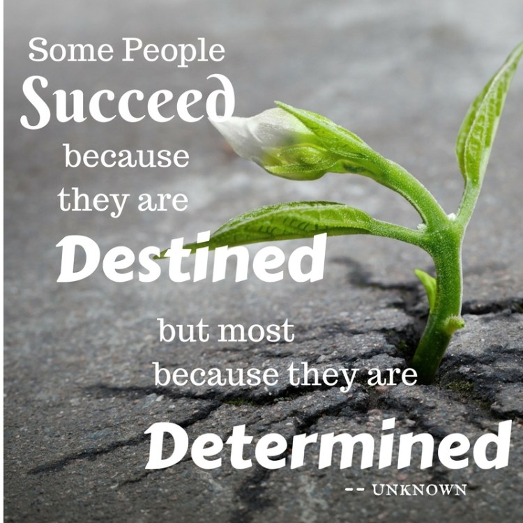 Are you waiting for your destiny to be fulfilled? Take these 7 determined steps to destiny. Make your success happen.