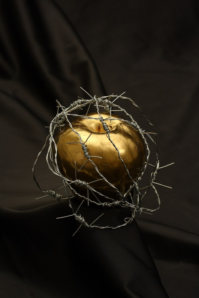 An apple of gold wrapped in barbed wire, sitting on a black cloth--could it be the apple referred to in the sneak peek at Paladina?