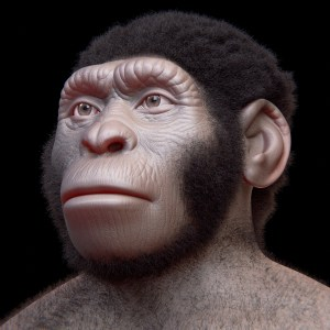 image of facial reconstruction of Homo Naledi one of the amazing discoveries of the past decade