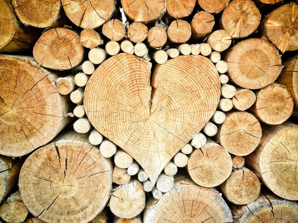 image is a looking at the end cuts of a stack of wood with one large heart-shaped log surrounded by small white logs--we're in this together, lets do random acts of love this month