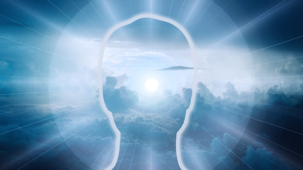Outline of a person's head with a radiance around it from he sun shining over a forest in the background perhaps it looks something like this when you nourish your soul