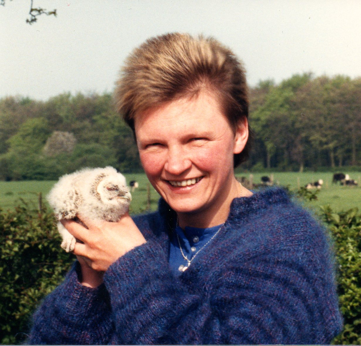 Hedgehog Head with Owlet!1988