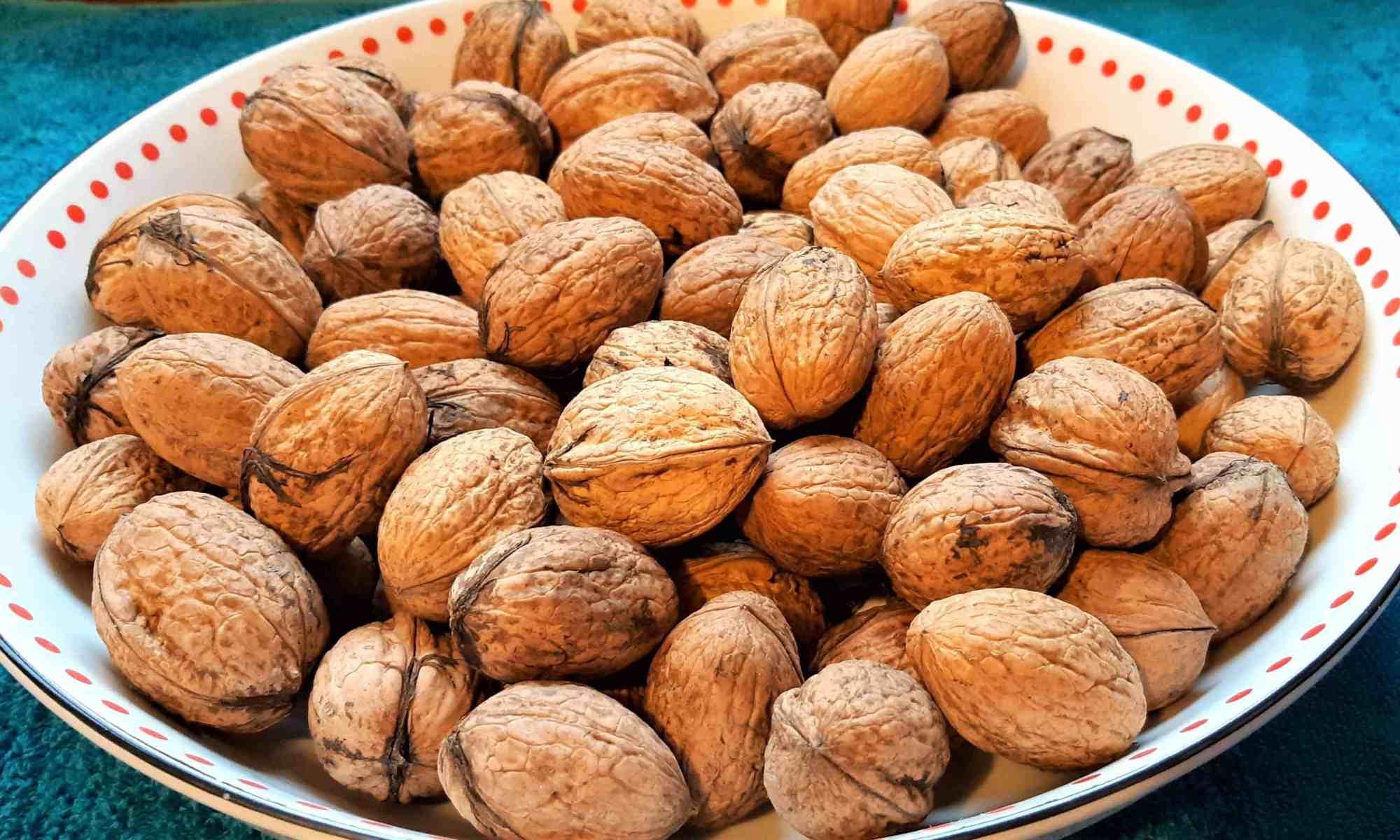 Walnuts from the walnut trees on the farm.