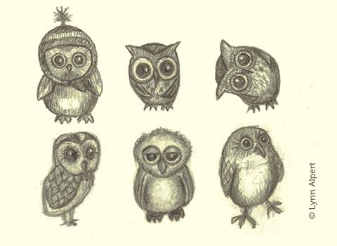 Sketches of owls by children's illustrator Lynn Alpert