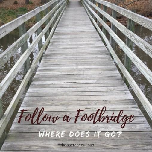 rbsh-follow-a-footbridge