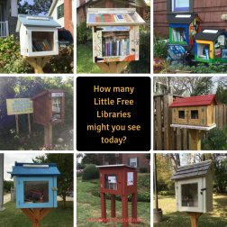 How many Little Free Libraries might you see today?