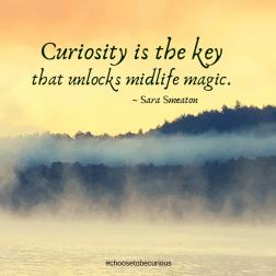 Smeaton - Curiosity is the key that unlocks midlife magic.